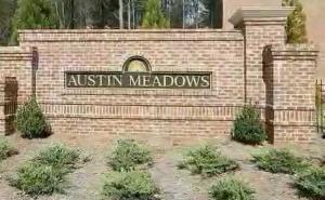 austin meadows